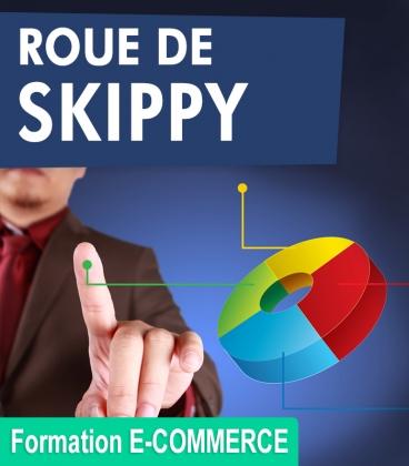 Augmenter votr chiffre d'affaire avec la roue de Skippy