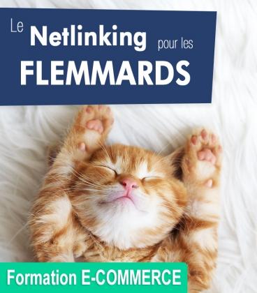 Le Netlinking pour les Flemmards